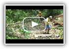Trote Solidário e Ecológico - Ecofaxina na Ilha Porchat